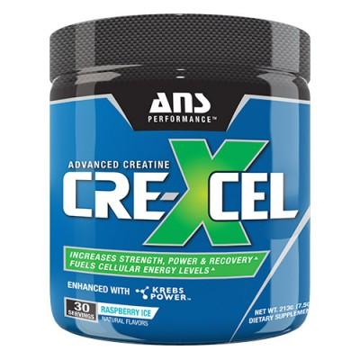 ANS креатин Crexcel малиновый лед 213 гр